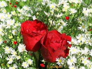 Felicidades en el Día de la MUJER